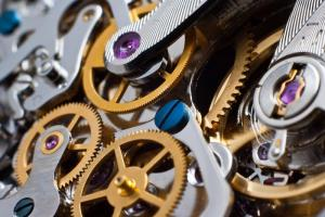 into-the-wild-the-blind-watchmaker-of-evoluti-L-HeDMzY